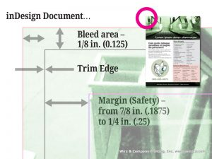 illustration of InDesign